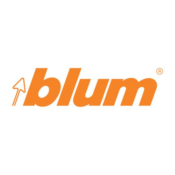 Blum Bot Piston Seal For Air Cylinder | Holdahl Company, Inc